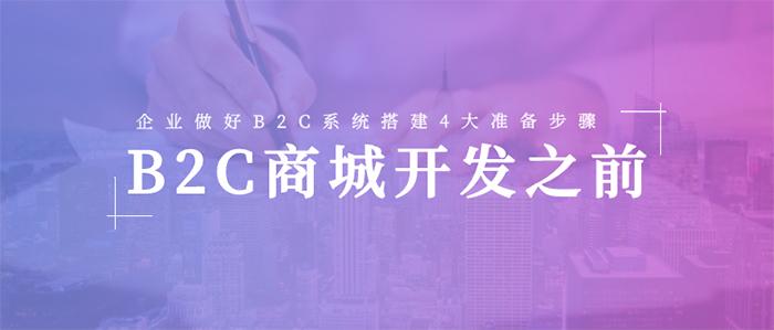 在B2C Mall开发之前,公司将完成B2C电子商务系统的四个准备步骤。
